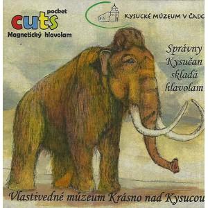 Magnetický hlavolam - Vlastivedné múzeum Krásno nad Kysucou